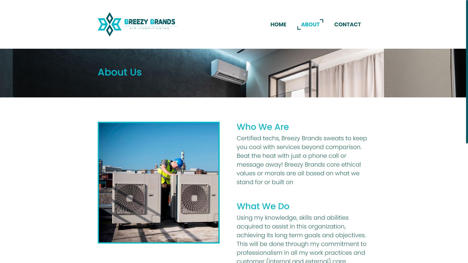 Breezy Brands UI Design